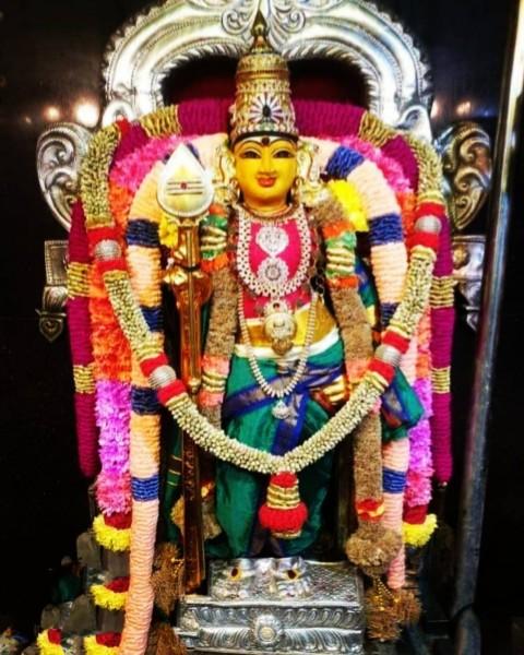Murti Lord Murugan Images Photo